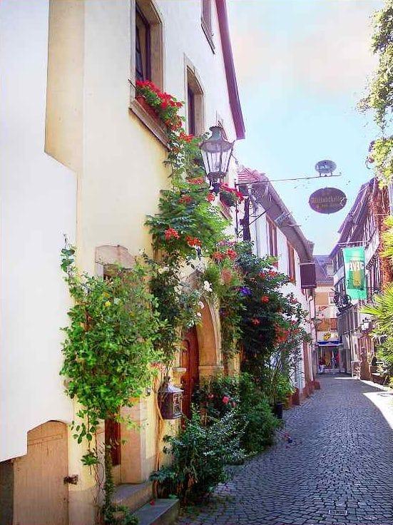 """Weinstube, Restaurant """"Altstadtkeller - bei Jürgen"""" in Neustadt in der Pfalz"""