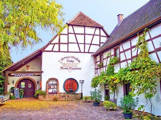 """Weinstube, Weingut """"Mathis"""" in Klingenmünster in der Pfalz"""