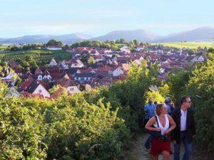 Ilbesheim in der Pfalz
