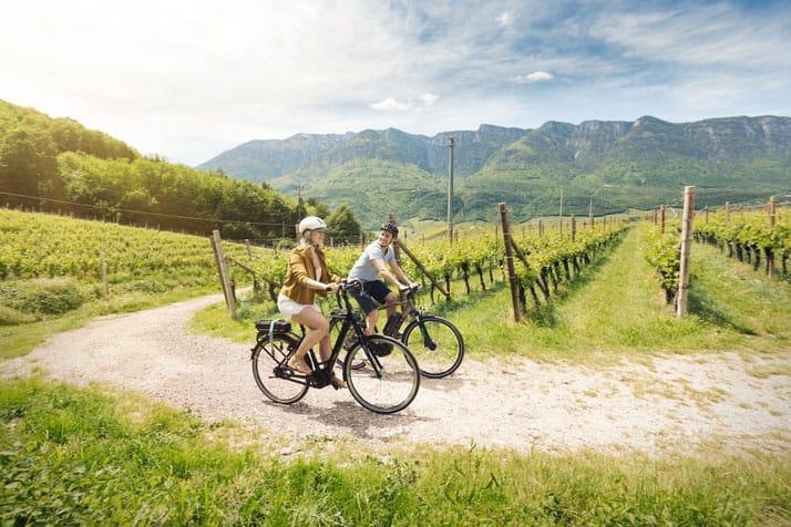 Auf dem E-Bike entspannt durch die Pfalz,