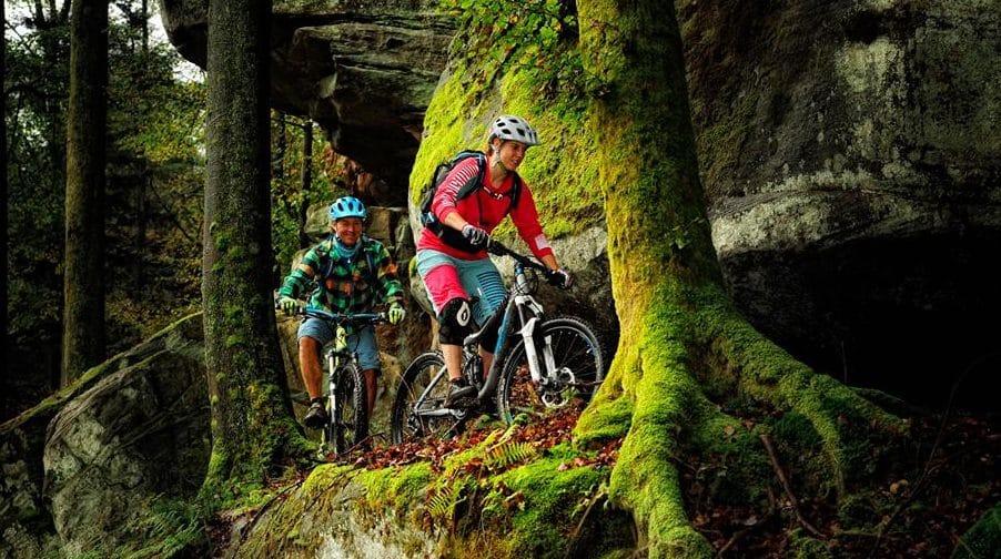 Mountainbike Park Pfälzerwald