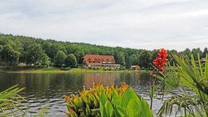 """Hotel garni, Landgasthof """"Zwickmühle"""" am Mühlweiher """"Saarbacherhammer"""" in Ludwigswinkel in der Pfalz"""