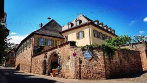 Grafen von der Leyen - Historische Winzergaststätte, Gartenterrasse in Burrweiler in der Pfalz