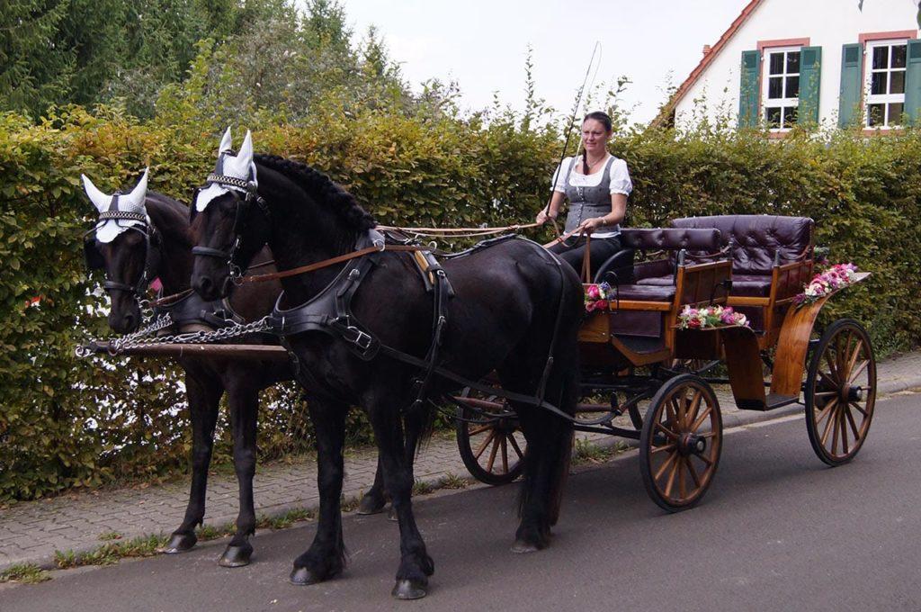 Kutschenfahrt in der Pfalz