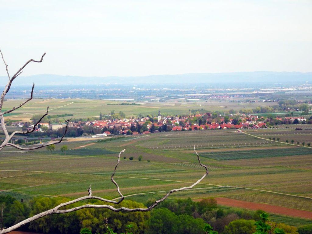 Kirchheim / Weinstraße