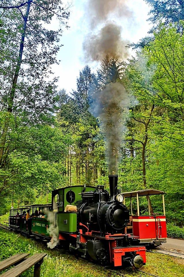 Stumpfwaldbahn bei Ramsen
