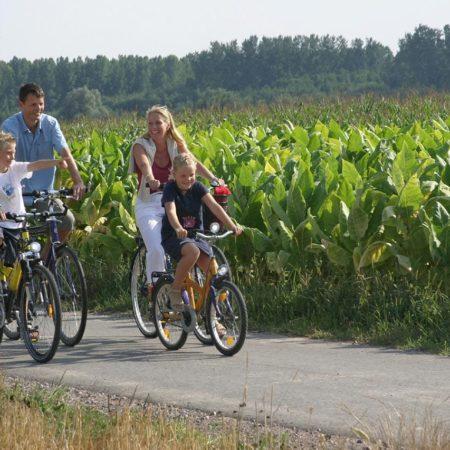 Radweg Tabaktour
