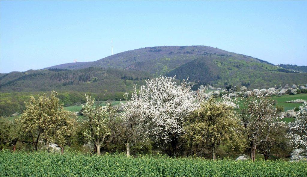 Der Donnersberg in der Pfalz