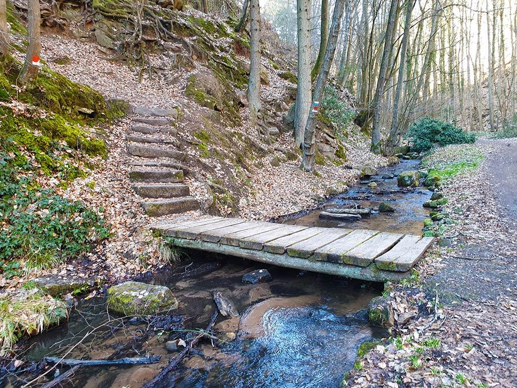 Wanderweg entlang des Mußbachs bei Gimmeldingen im Pfälzerwald