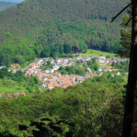 Schwanheim im Pfälzerwald